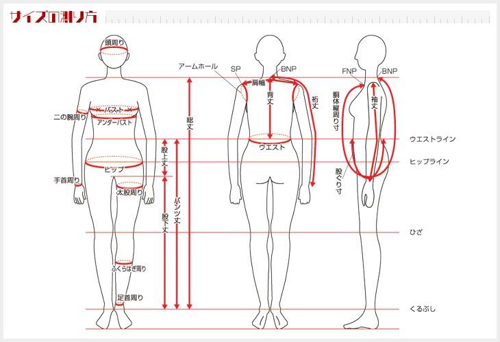 サイズ表・サイズの測り方